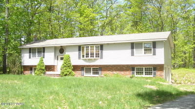 Milford Single Family Home For Sale: 107 Laurel Acres Rd