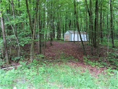 Pleasant Mount Residential Lots & Land For Sale: Dixon Valley Rd