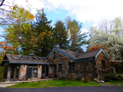 Dingmans Ferry Commercial For Sale: 258 Silver Lake Rd