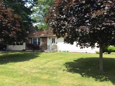 Matamoras Single Family Home For Sale: 401 6th St