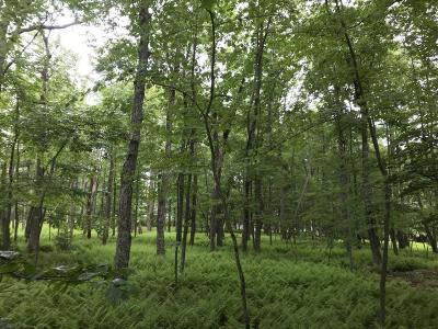 Pocono Mt Woodland Lakes Residential Lots & Land For Sale: Yellow Wood Dr