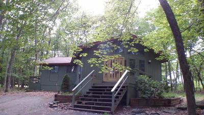 Hemlock Farms Single Family Home For Sale: 200 Hillside Dr