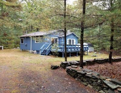 Hawley Single Family Home For Sale: 138 Timber Ridge