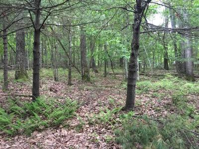 Tafton Residential Lots & Land For Sale: Lot 2 Russell Ln