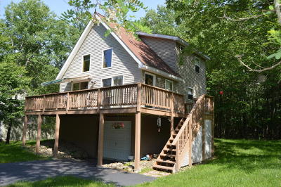 Lake Ariel Single Family Home For Sale: 1209 Wallenpaupack Dr