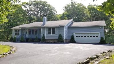 Hemlock Farms Single Family Home For Sale: 809 West Spur Court