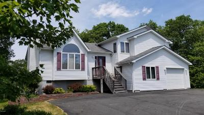 Lords Valley PA Single Family Home For Sale: $248,000
