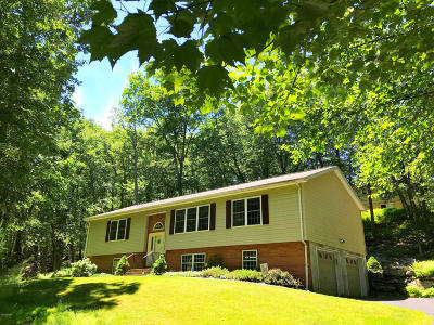 Milford Single Family Home For Sale: 123 Buckeye Ln