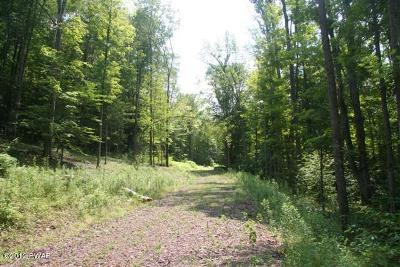 Beach Lake Residential Lots & Land For Sale: Boyds Mills Rd