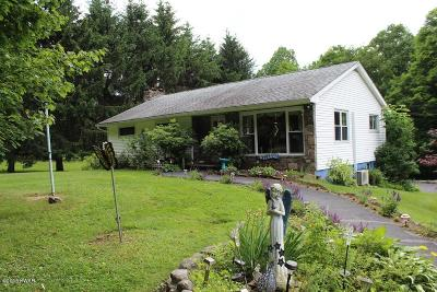 Lake Ariel Single Family Home For Sale: 305 Gravity Rd