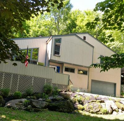 Lake Ariel Single Family Home For Sale: 480 Lakeview Dr