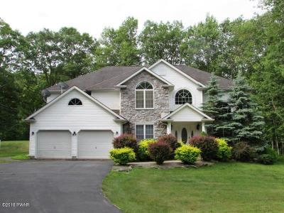 Hawley PA Single Family Home For Sale: $375,000