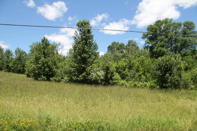 Pleasant Mount Residential Lots & Land For Sale: Great Bend Turnpike