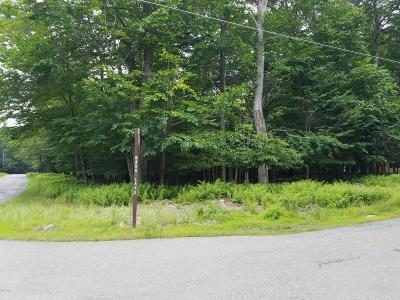 Gouldsboro Residential Lots & Land For Sale: 108 Bass Ln