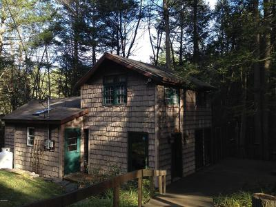 Single Family Home For Sale: 400 Pa-434