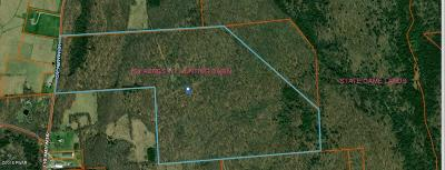 Wayne County Residential Lots & Land For Sale: 1035 Creamton Dr