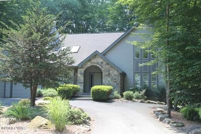 Lake Ariel Single Family Home For Sale: 589 Pocono Ct