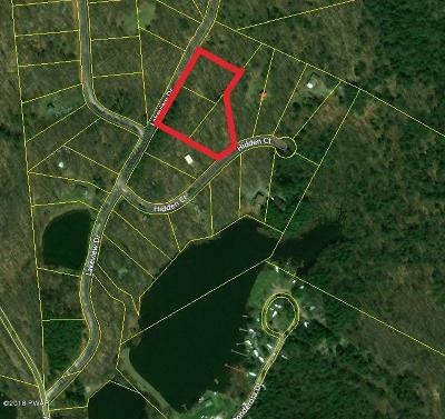 Honesdale Residential Lots & Land For Sale: Lakeview Dr