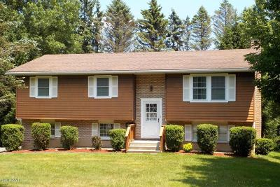 Wallenpaupack Lake Estates Single Family Home For Sale: 1015 Calypso Dr