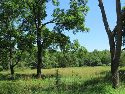 Dingmans Ferry Residential Lots & Land For Sale: 1160 Milford Rd