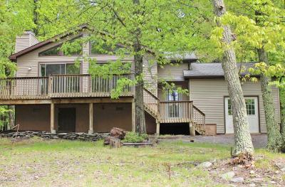 Wallenpaupack Lake Estates Single Family Home For Sale: 1027 Deer Trail Rd
