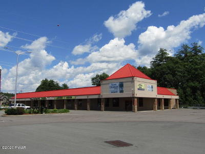 Hawley Commercial For Sale: 74 Welwood Ave