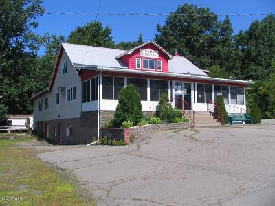 Wayne County Commercial For Sale: 1381 Purdytown Tpke