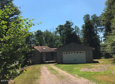 Pike County Single Family Home For Sale: 136 Hemlock Ter
