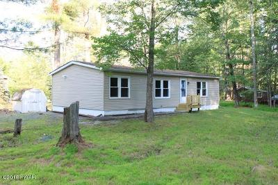 Lackawaxen Single Family Home For Sale: 101 Militia Ct