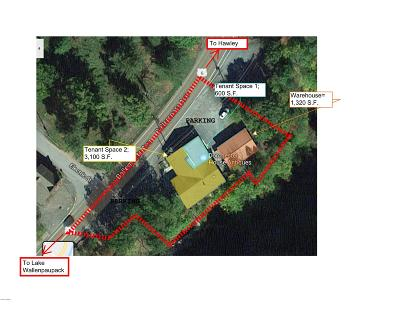Hawley Commercial For Sale: 210 Welwood Ave