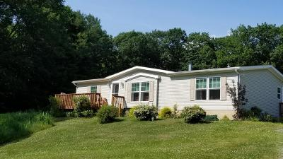 Lake Huntington Single Family Home For Sale: 19 Smales Rd