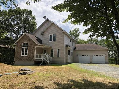 Hemlock Farms Single Family Home For Sale: 119 Cliff Dr
