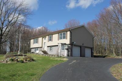 Lake Ariel Single Family Home For Sale: 158 Murnin Rd
