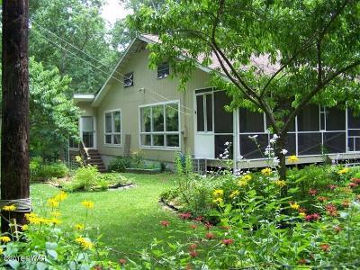 Narrowsburg Single Family Home For Sale: 581 Lake Shore Ln