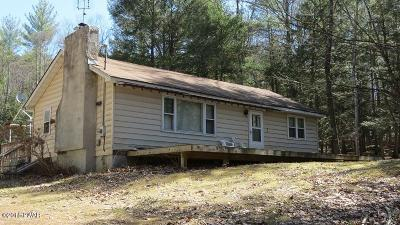 Narrowsburg Single Family Home For Sale: 25 Perry Pond Rd