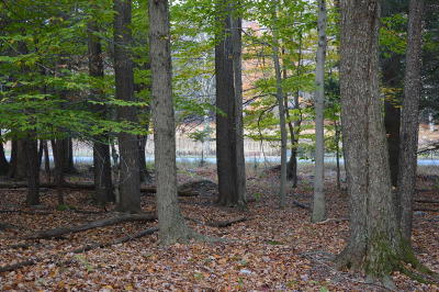 Pike County Residential Lots & Land For Sale: Lot 1801 Oakwood Dr