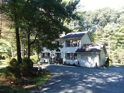 Pike County Single Family Home For Sale: 141 Husson Rd