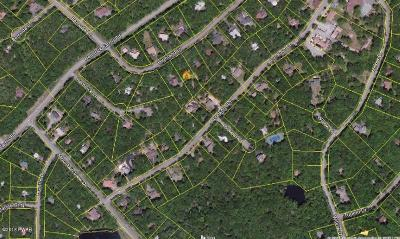 Pike County Residential Lots & Land For Sale: 127 Highland Ln