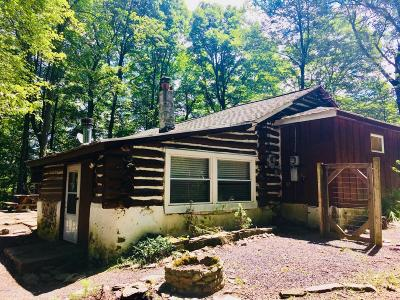 Single Family Home For Sale: 101 Sawmill Rd