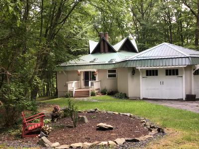 Lords Valley PA Single Family Home For Sale: $287,500