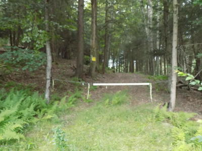 Newfoundland Residential Lots & Land For Sale: E. Sterling Rd (Rt 191)
