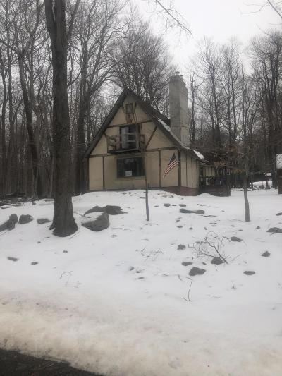Newfoundland Single Family Home For Sale: 1075 Raintree Rd