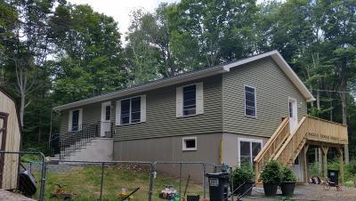 Newfoundland Single Family Home For Sale: 49 Sky Line Dr