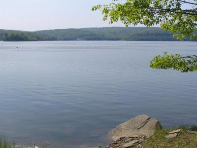 Wallenpaupack Lake Estates Residential Lots & Land For Sale: 20C Boat House Rd