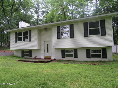 Dingmans Ferry Single Family Home For Sale: 156 Michele Ln