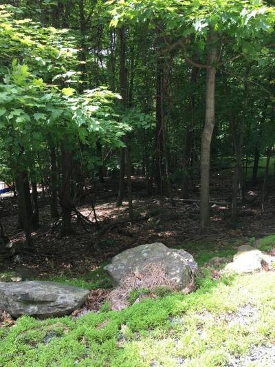 Wallenpaupack Lake Estates Residential Lots & Land For Sale: 3 Mohican Rd