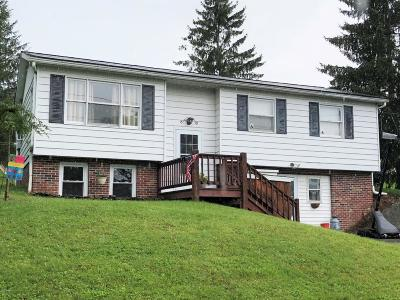Honesdale Single Family Home For Sale: 101 Beechwood Dr