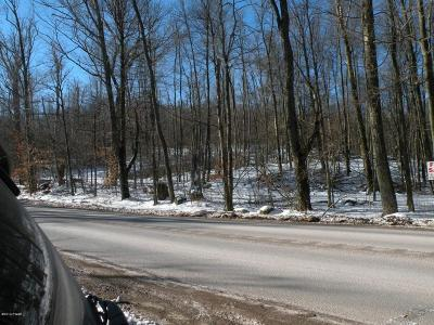 Wayne County Residential Lots & Land For Sale: Lot 2 Route 196