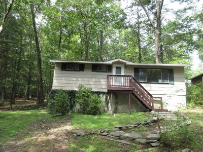 Dingmans Ferry Single Family Home For Sale: 173 Outer Dr