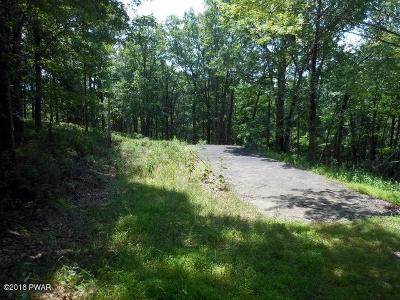 Lackawaxen Residential Lots & Land For Sale: Olafsen Rd